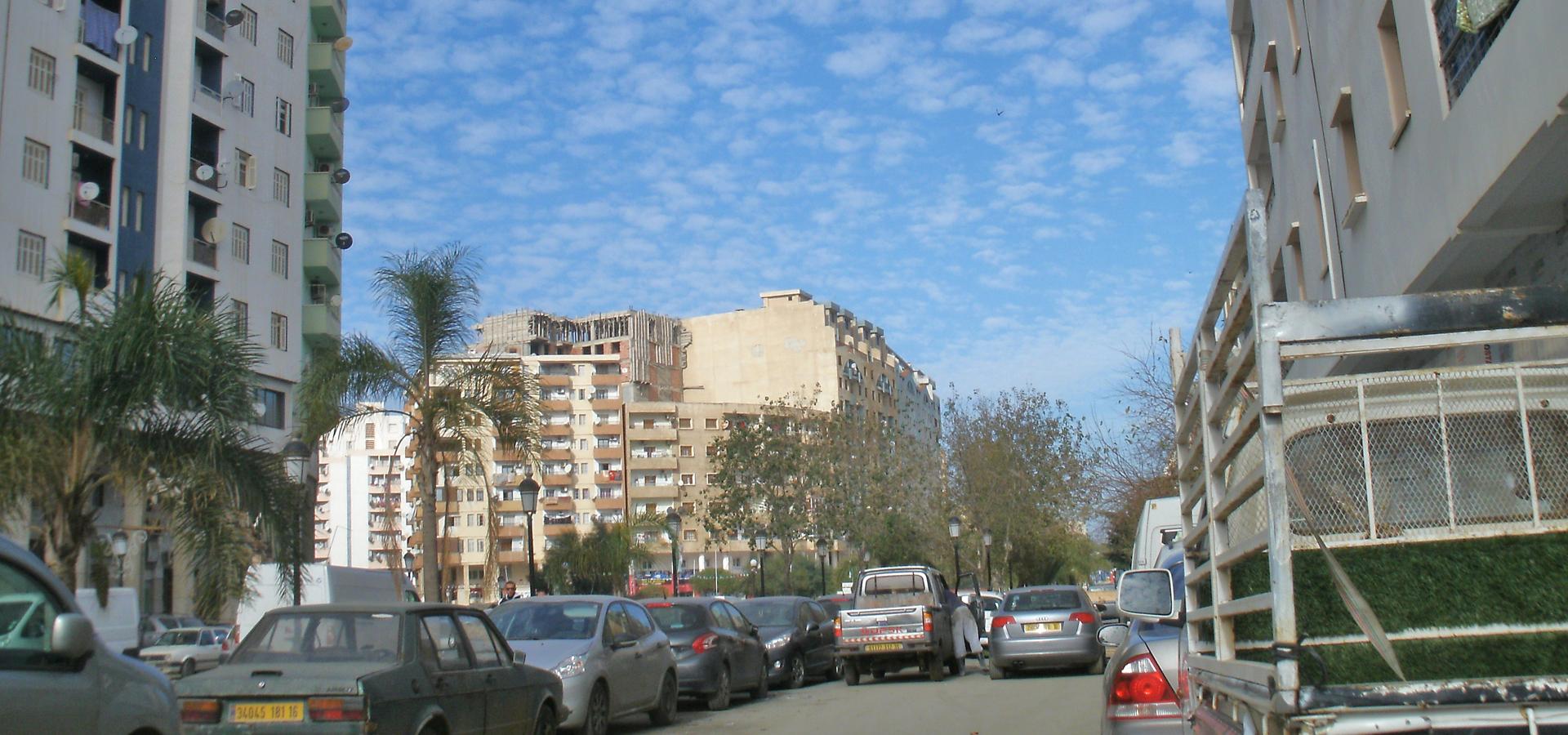 Peer-to-peer advisory in Thenia, Boumerdès Province, Algeria
