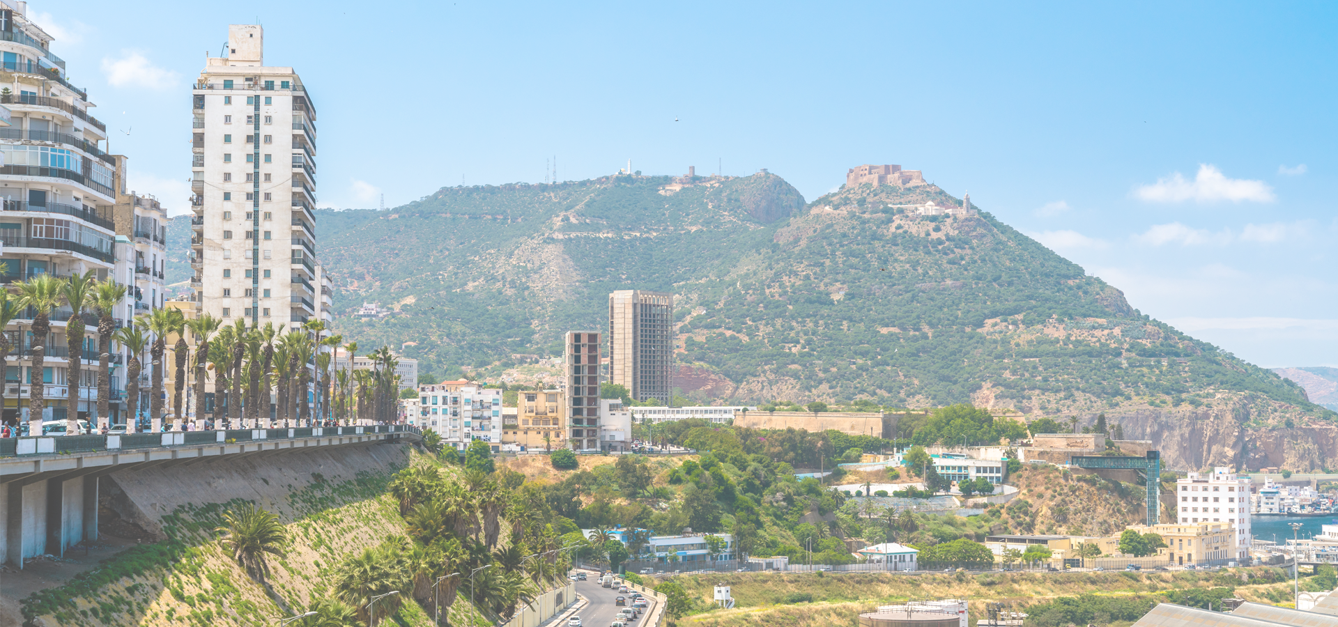 Peer-to-peer advisory in Oran, Algeria