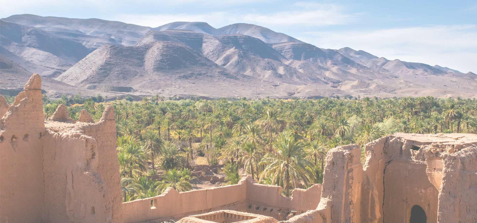 Peer-to-peer advisory in Meknes, Morocco.