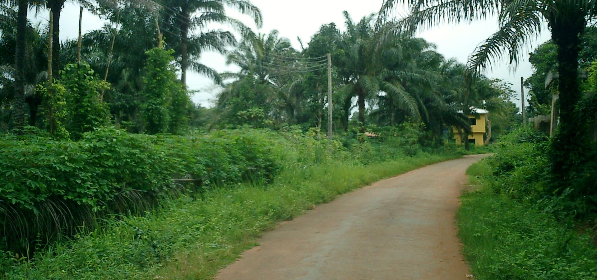 Peer-to-peer advisory in Awka, Anambra State, Nigeria