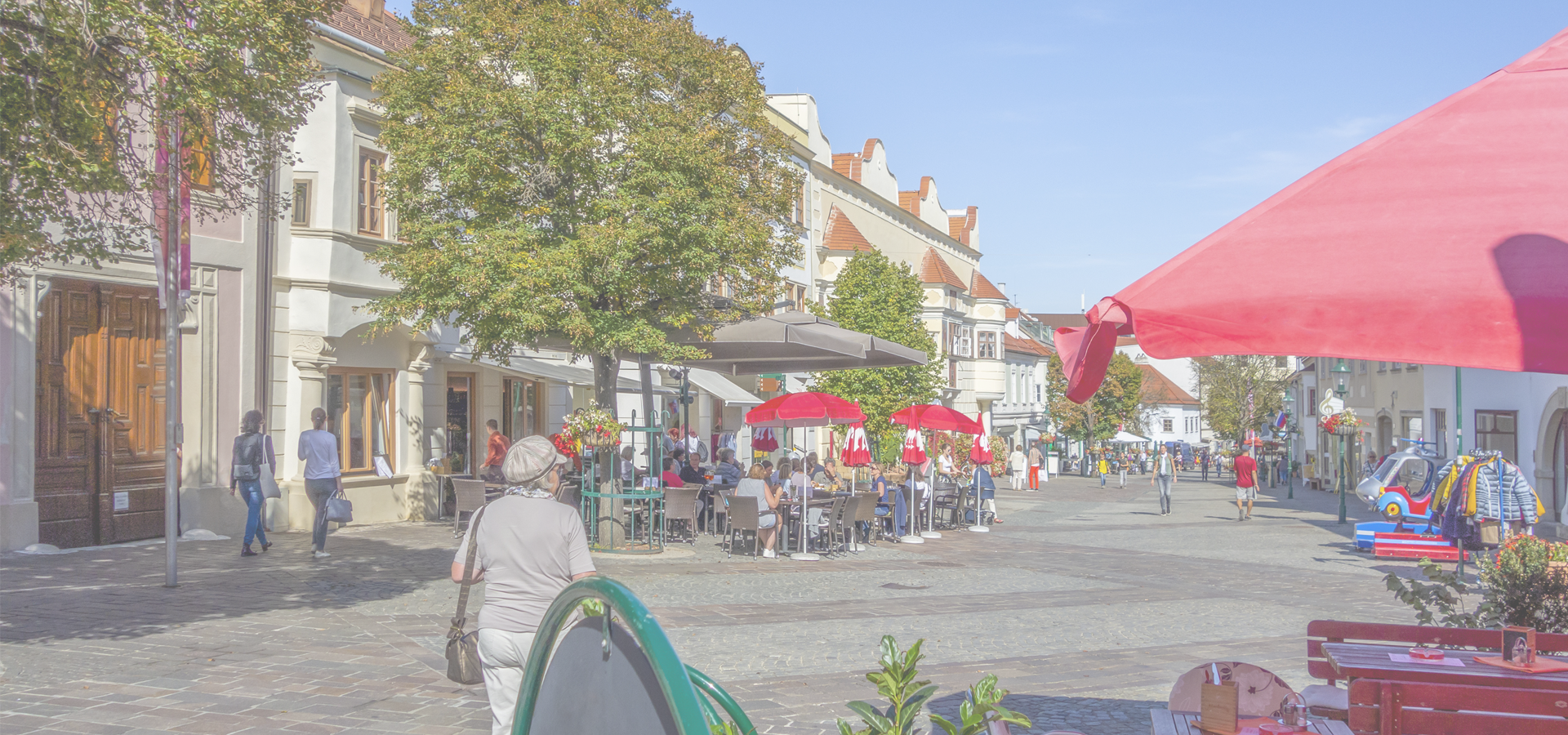 Peer-to-peer advisory in Eisenstadt, Burgenland, Austria